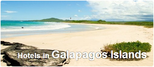 Hotels in Galapagos Islands