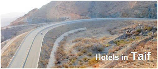Hotels in Taif