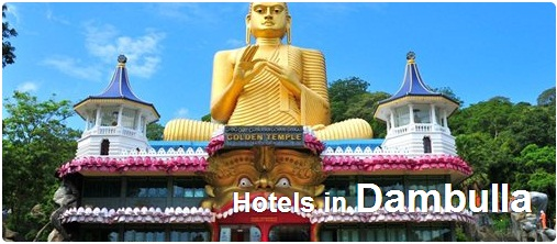 Hotels in Dambulla
